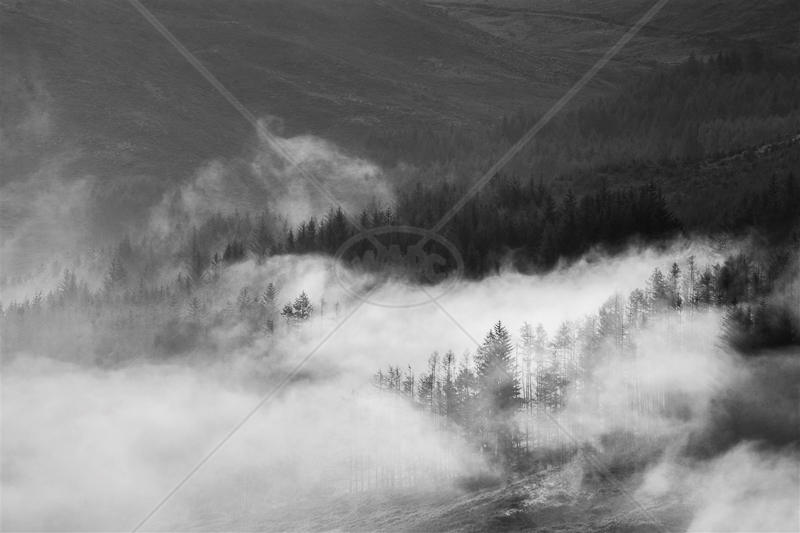 Glen Trool Mist by Tim Growcott - C (Adv mono)