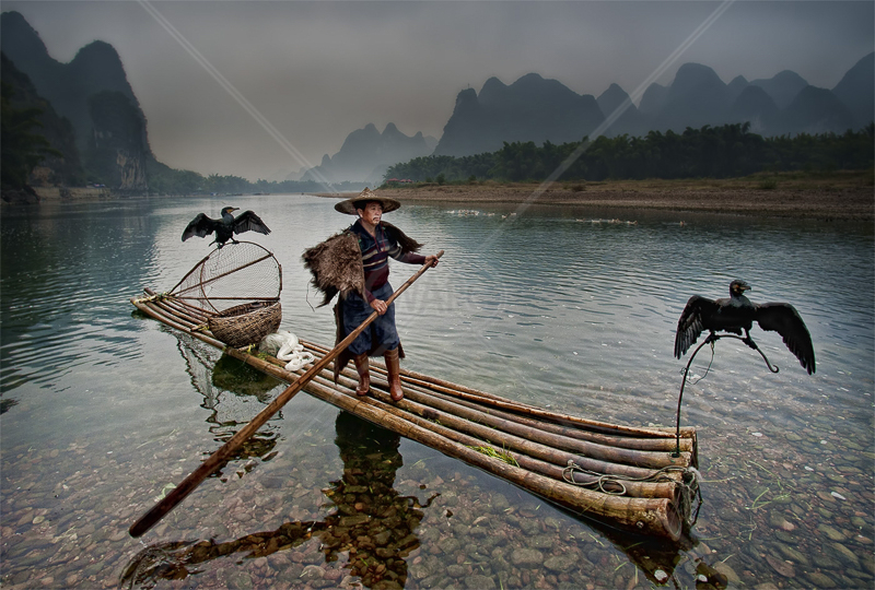 "GPU Gold medal Best At work (trav) - ""Li River Fisherman"" by Mike Sharples ARPS EFIAP APAGB BPE5"