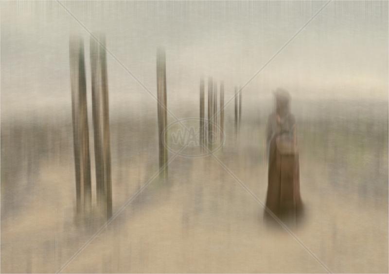 Mysterial Beachcomber by Hugh Stanton - C (ADV col)
