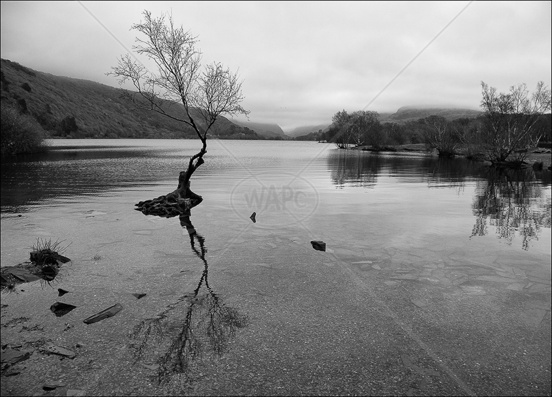 Llyn Padarn by Ian Griffiths - HC (INT mono)