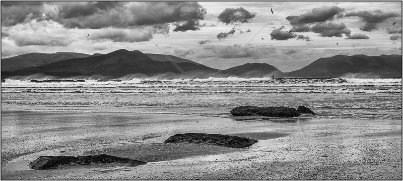 Windy Day at the Beach by Ian Griffiths - 1st (Int mono)