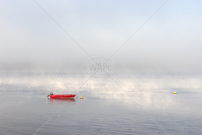 Misty Mooring by Irene Froy - C (Adv col)g