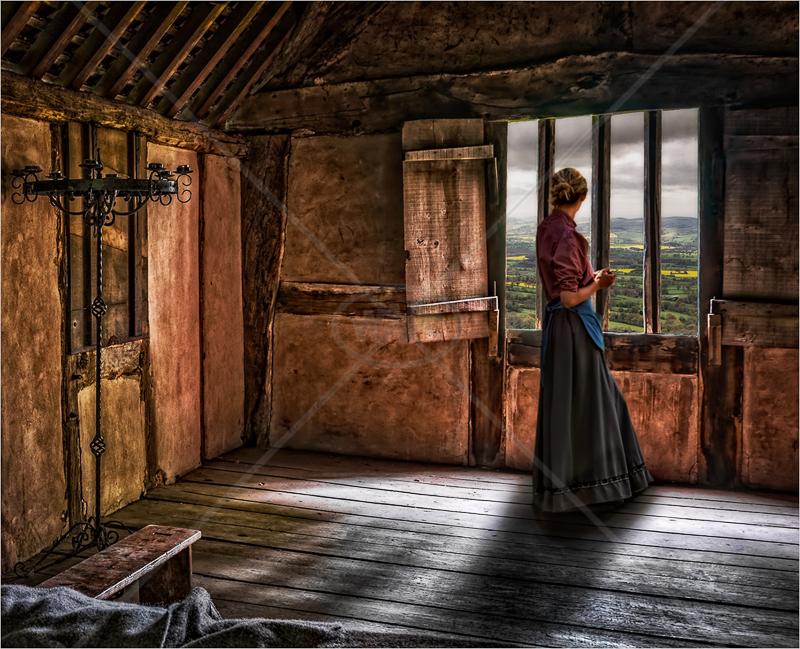 The Shuttered Window by Hugh Stanton - HC (adv)