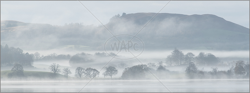 Misty Morning by Janet Griffiths - 1st (Adv)