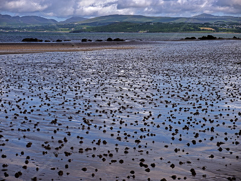Lugworm Casts at Buncrana by Gerry Froy - C (Int)
