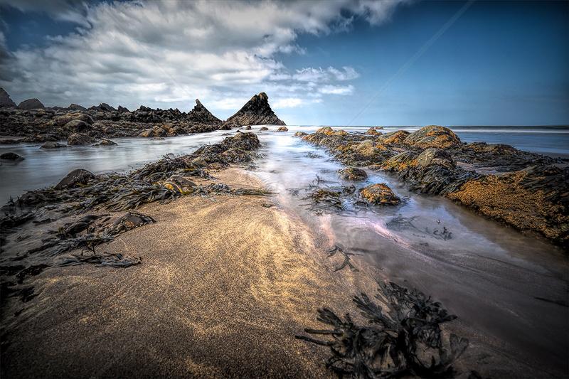 Hartland Quay Beach by Calvin Downes - C (PDI)