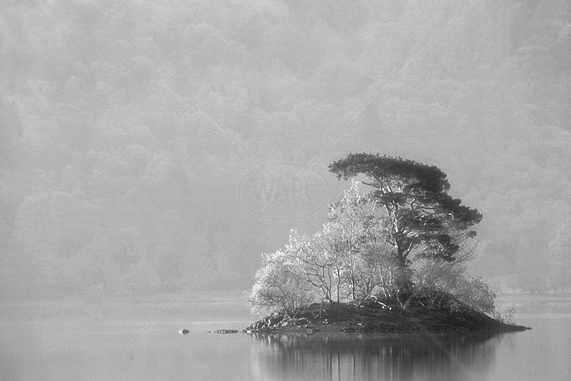 Derwent Island by Irene Froy - 1st (Adv mono)