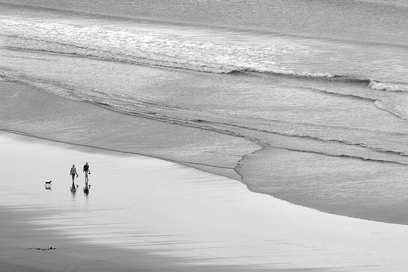 Walking the Dog by Irene Froy - C (Adv mono)