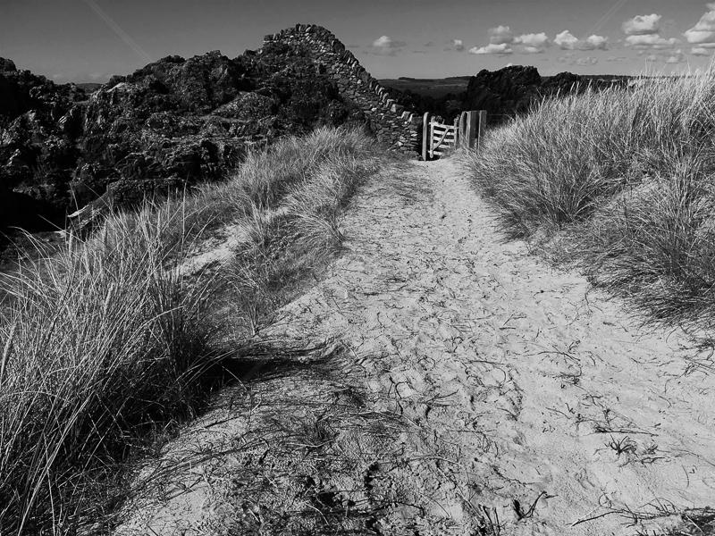 Sandy Path by Geoff Owen - HC