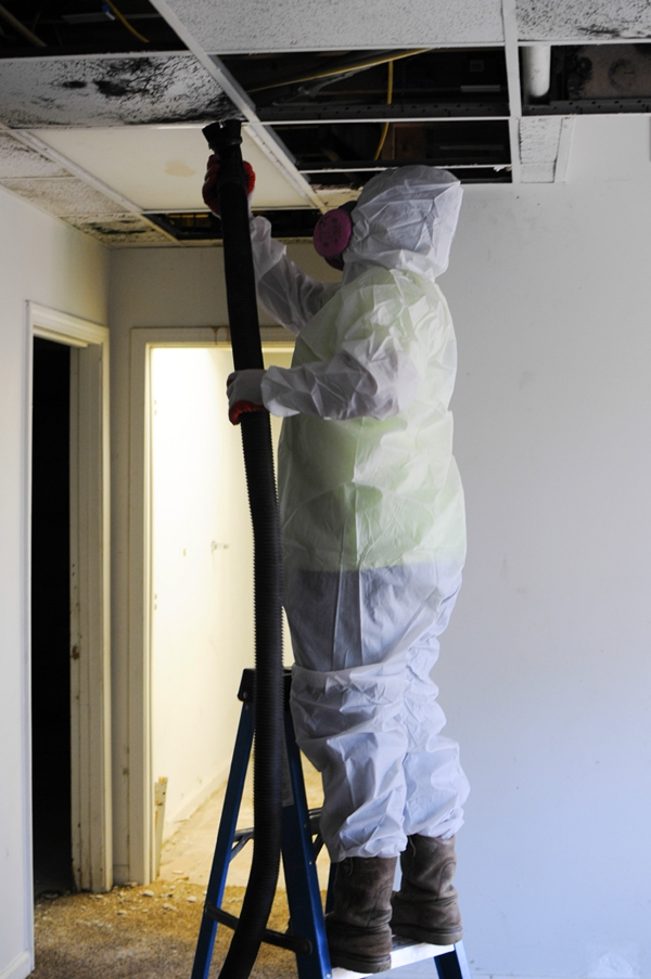 mold-cleaning.jpg