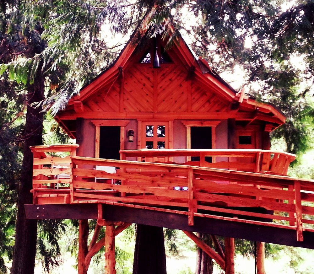front.of.big.treehouse.jpg