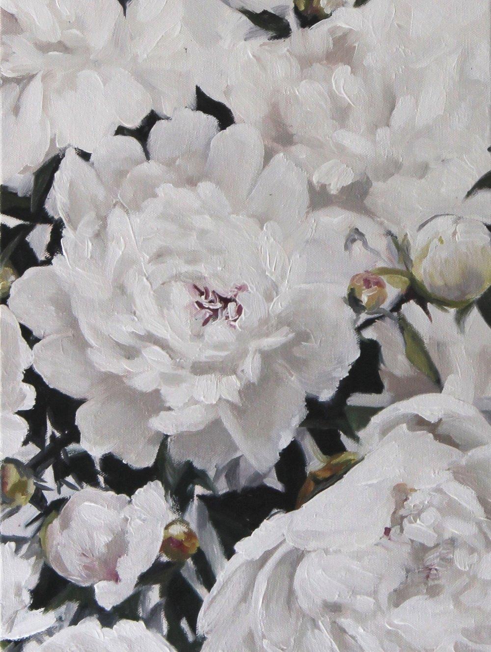 White Peonies II by Jess Blazejewski