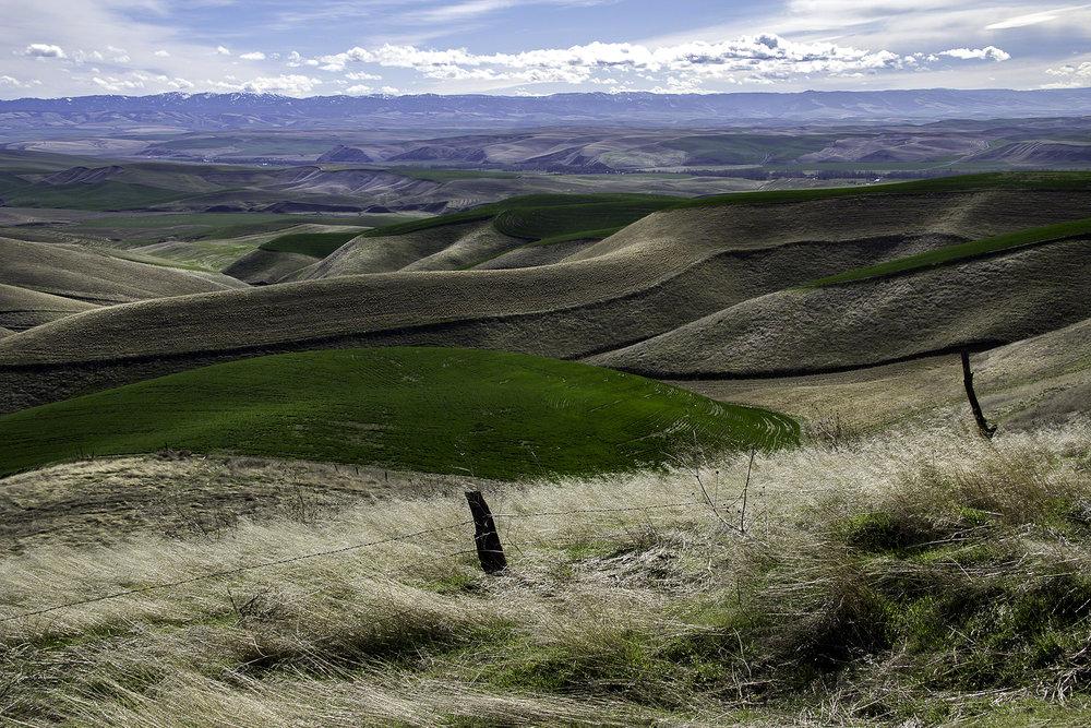Skyrocket hills.jpg