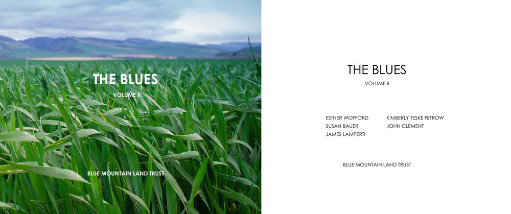 The Blues II - Cover for website.jpg