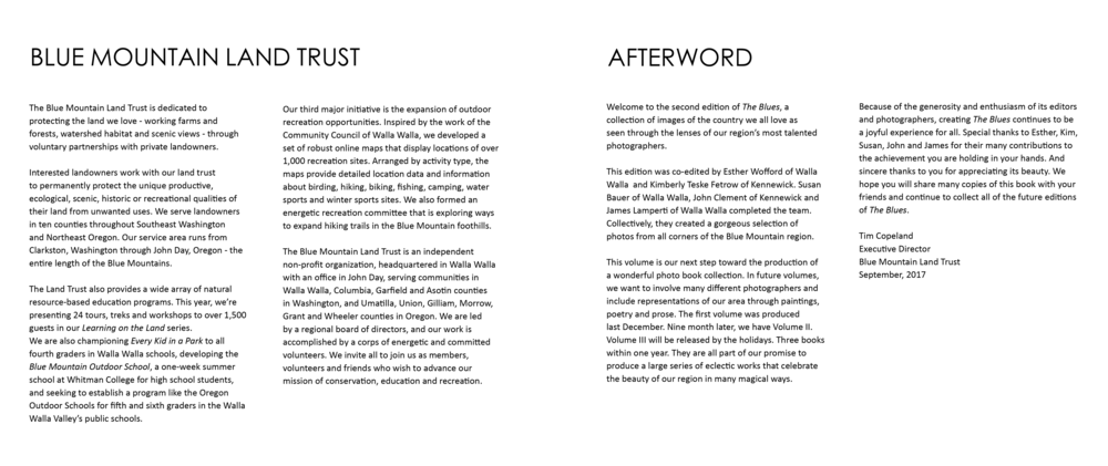 The Blues II - pages for website 19.png