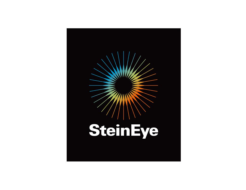 SteinEye.jpg