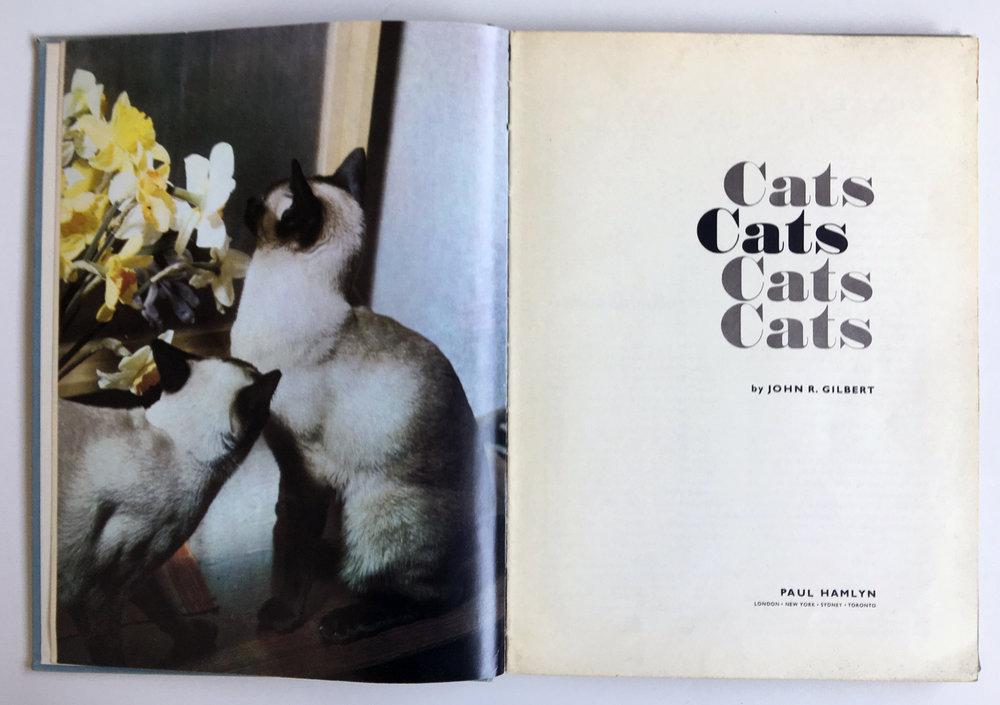 Cats Cats Cats Cats Cats, 1961