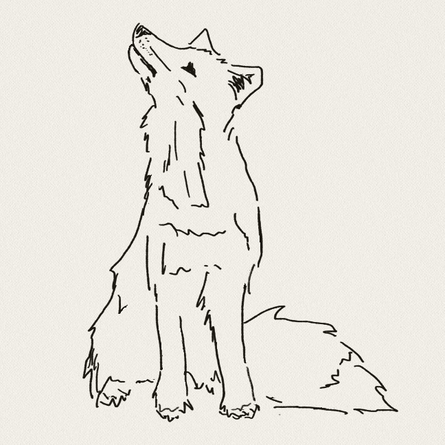 KRISTENPETSCHE_FOX_FIVE.jpg