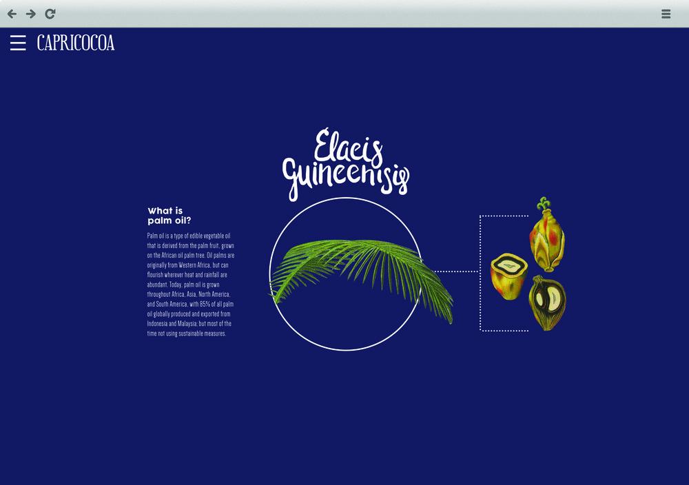Capricocoa Website_home.jpg