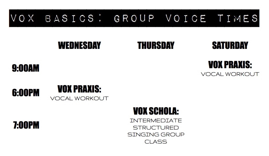 "*Term 1 starts on the 4th February and ends of the 6th April! You can join ""Vox Praxis"", as a casual singer for $20 per class, space permitting. Video call options are available for those in regional, interstate, or international locations. A $40 deposit on each 9 week group voice pass is required to secure your booking with the balance due on 15th February. Discounts are available for multiple class passes - please ask for more details. Group Voice Passes are not transferrable or refundable. Full terms and conditions will be emailed to you at the time of booking."