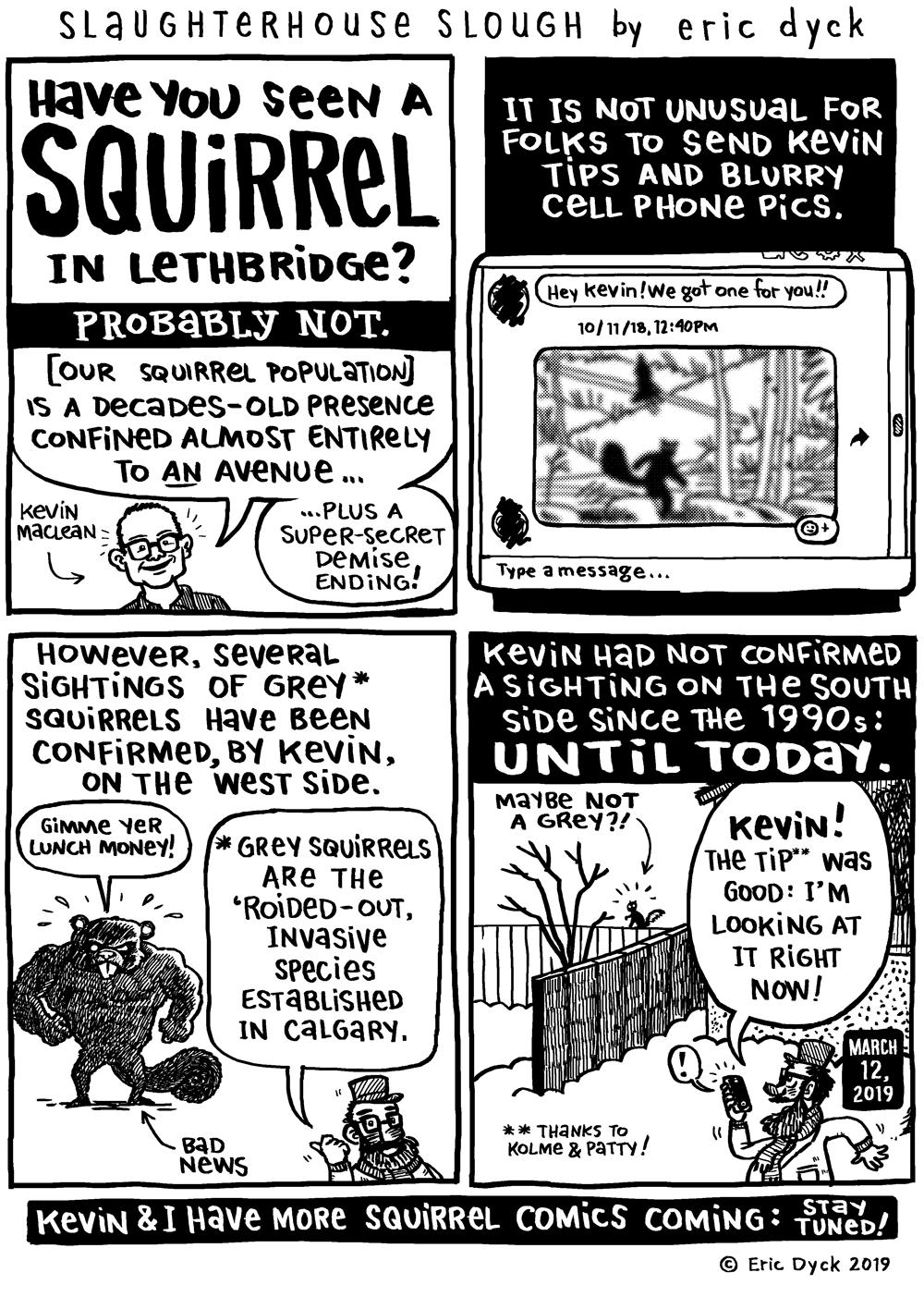 SLAUGHTERHOUSE SLOUGH: HAVE YOU SEEN A SQUIRREL? — ericdyck com