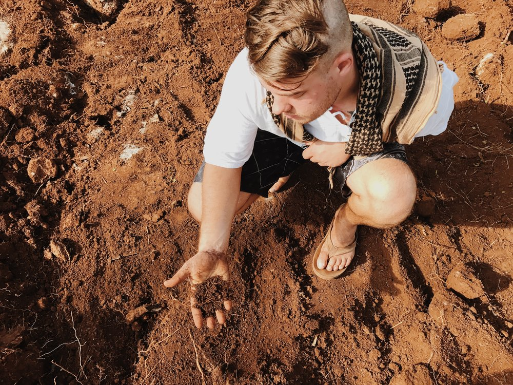 Your crops are only as good as your soil. We found good soil with some beautiful crumb structure and water retention.
