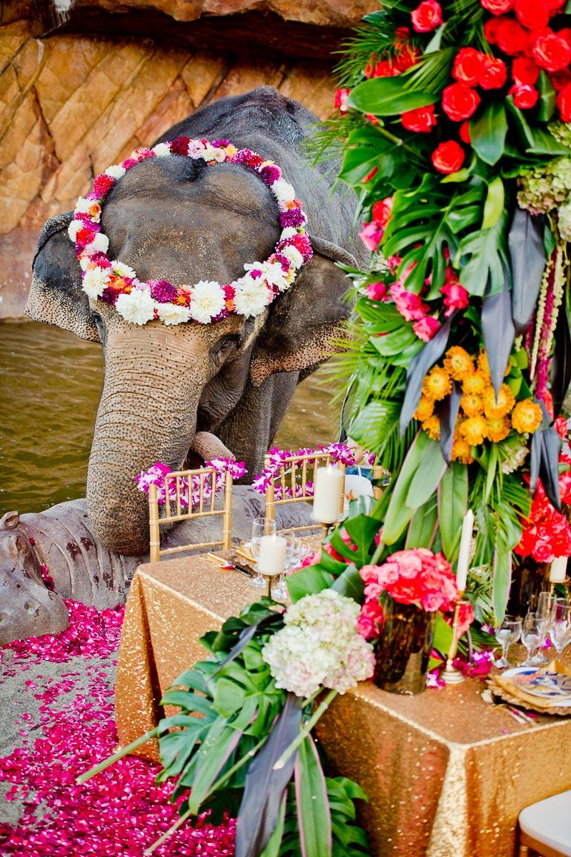 3366-moscastudio-the-perfect-occasion-grace-ormonde-wedding-style-editorial-20160825-NOlogo.jpg