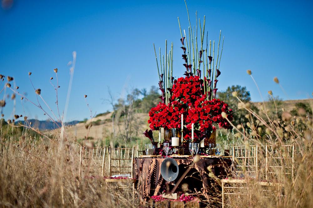 3666-cheetah-moscastudio-the-perfect-occasion-grace-ormonde-wedding-style-editorial-20160825-NOlogo.jpg
