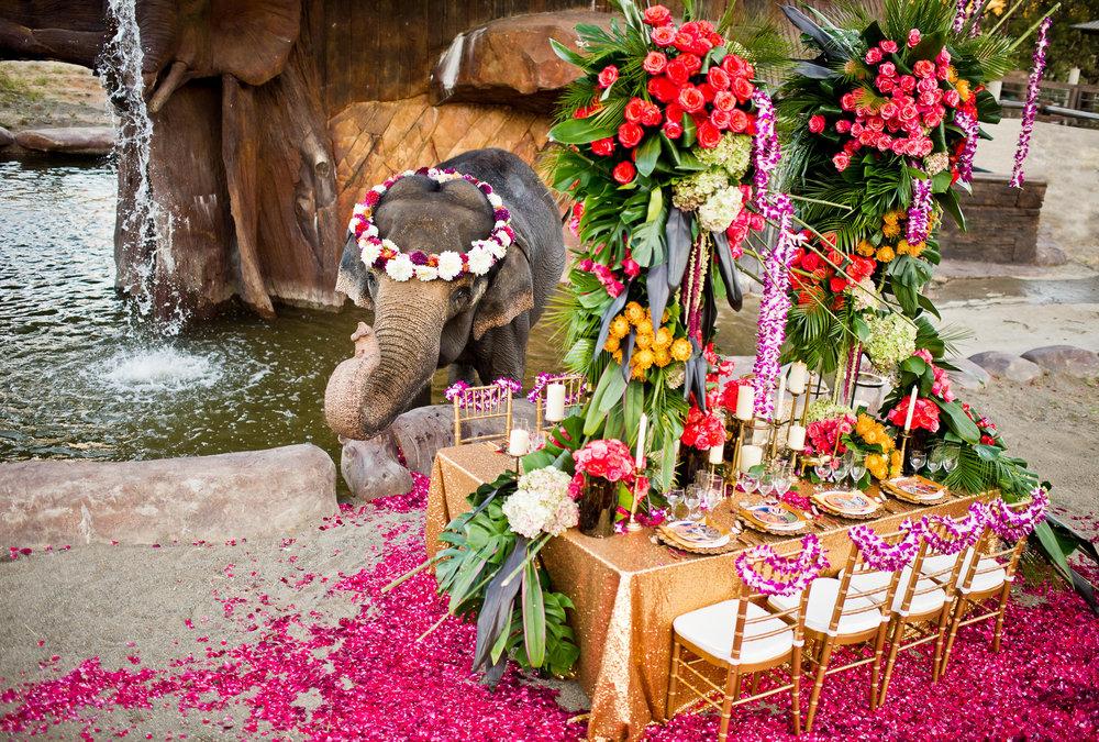 3390-moscastudio-the-perfect-occasion-grace-ormonde-wedding-style-editorial-20160825-PRINT-v2.jpg