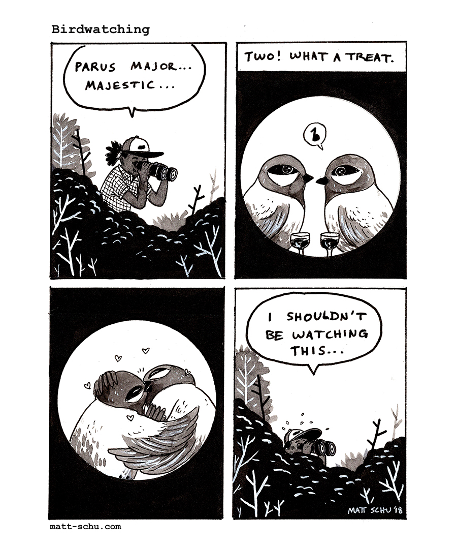 birdwatchingcomic_mattschu_300_3inch.jpg