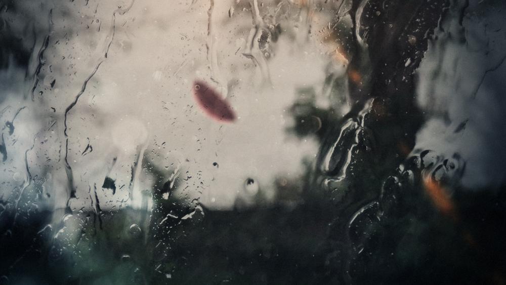 Frozen_0080_Umbrella_00000.jpg