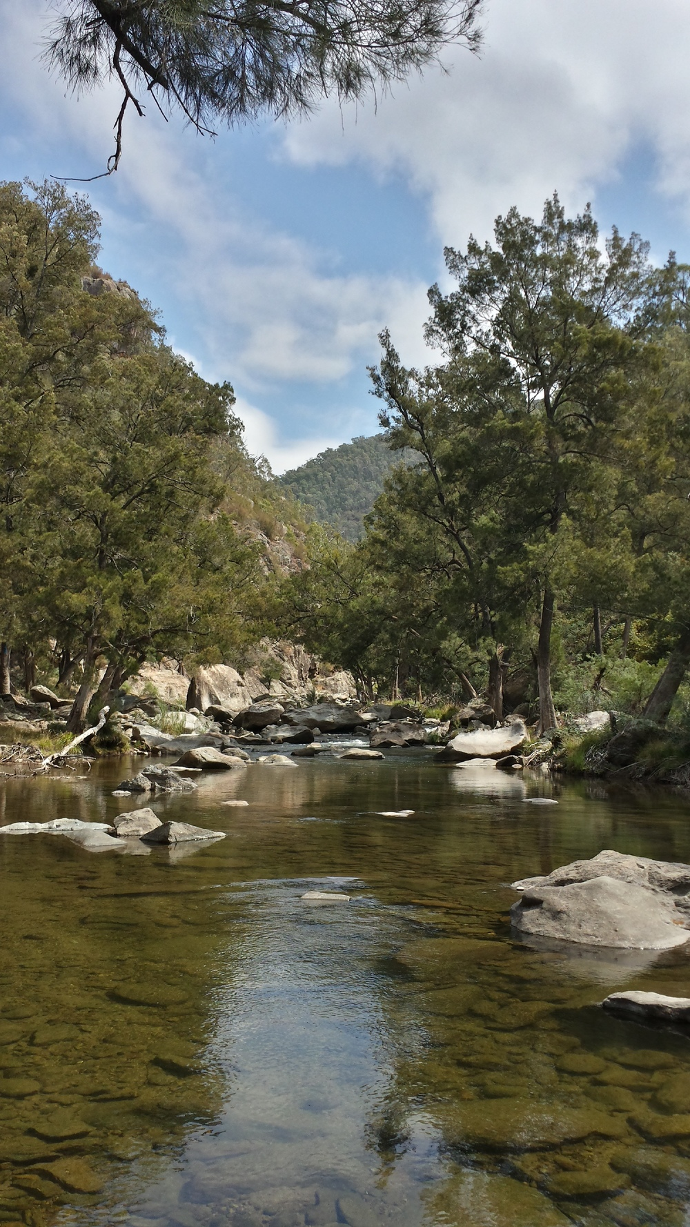 river in the Brindabellas