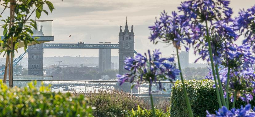 London April 2018 - Tower Bridge.png.jpg