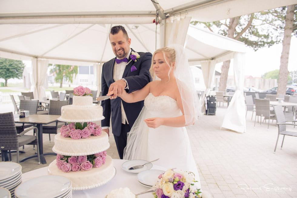 Lolland-våbensted-Bryllupsbilleder-bryllupsfotograf-202.jpg