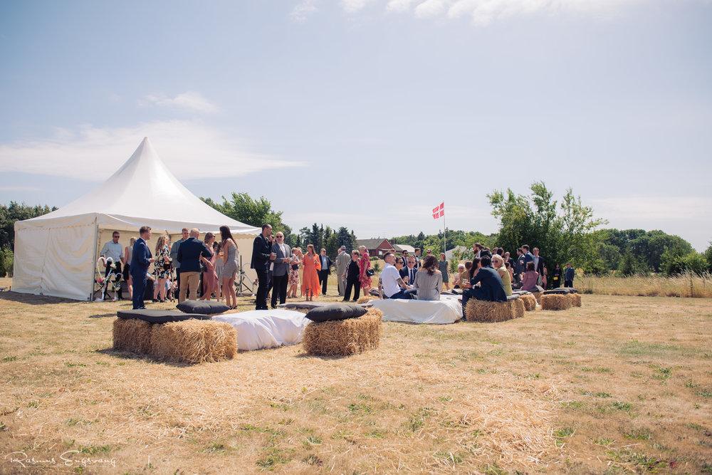 Roskilde_fotograf_til_bryllup-117.jpg