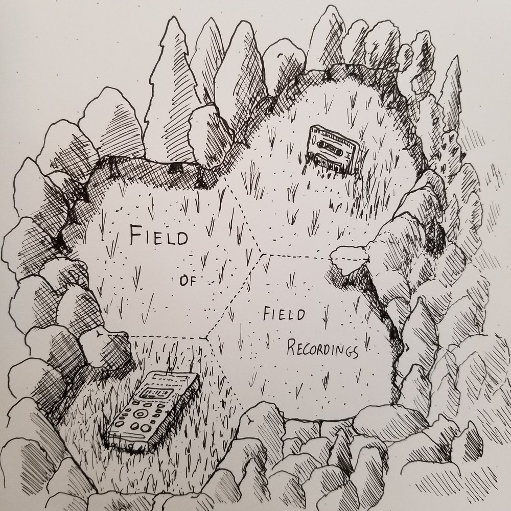 field of field recordings