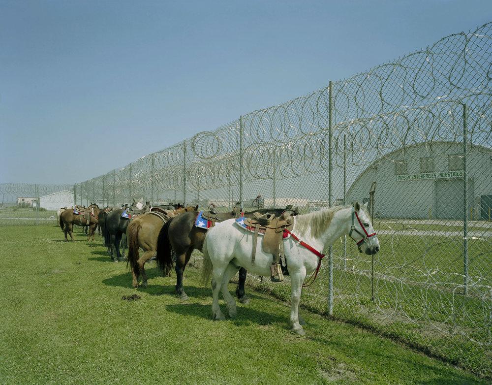 Angola Prison Rodeo