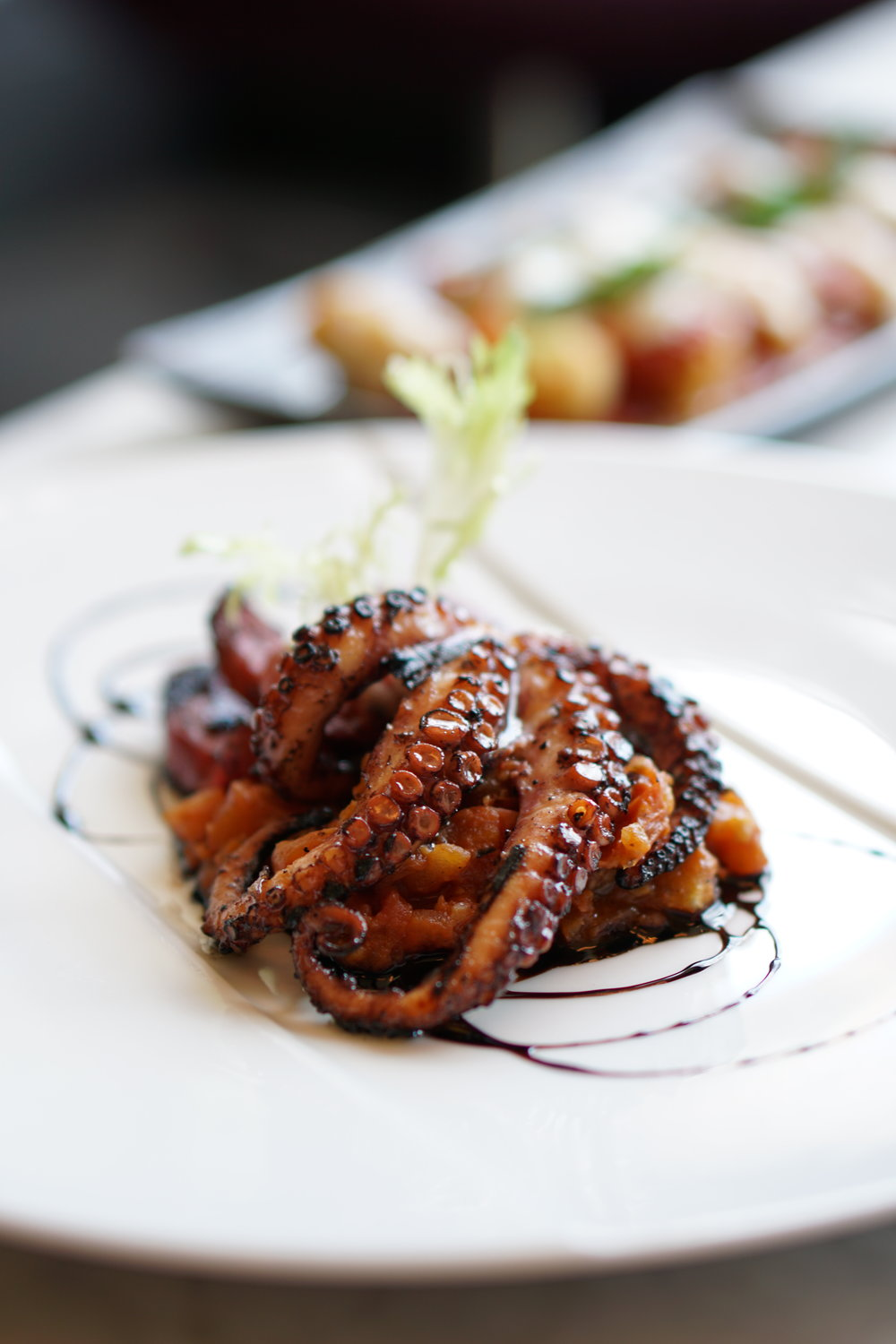 Octopus Appetizer: grilled octopus, chorizo, roasted garlic &tomato ragu