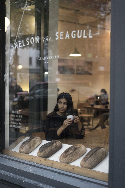 nelson-the-seagull.jpg