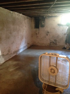 Basement: new concrete floor slab.