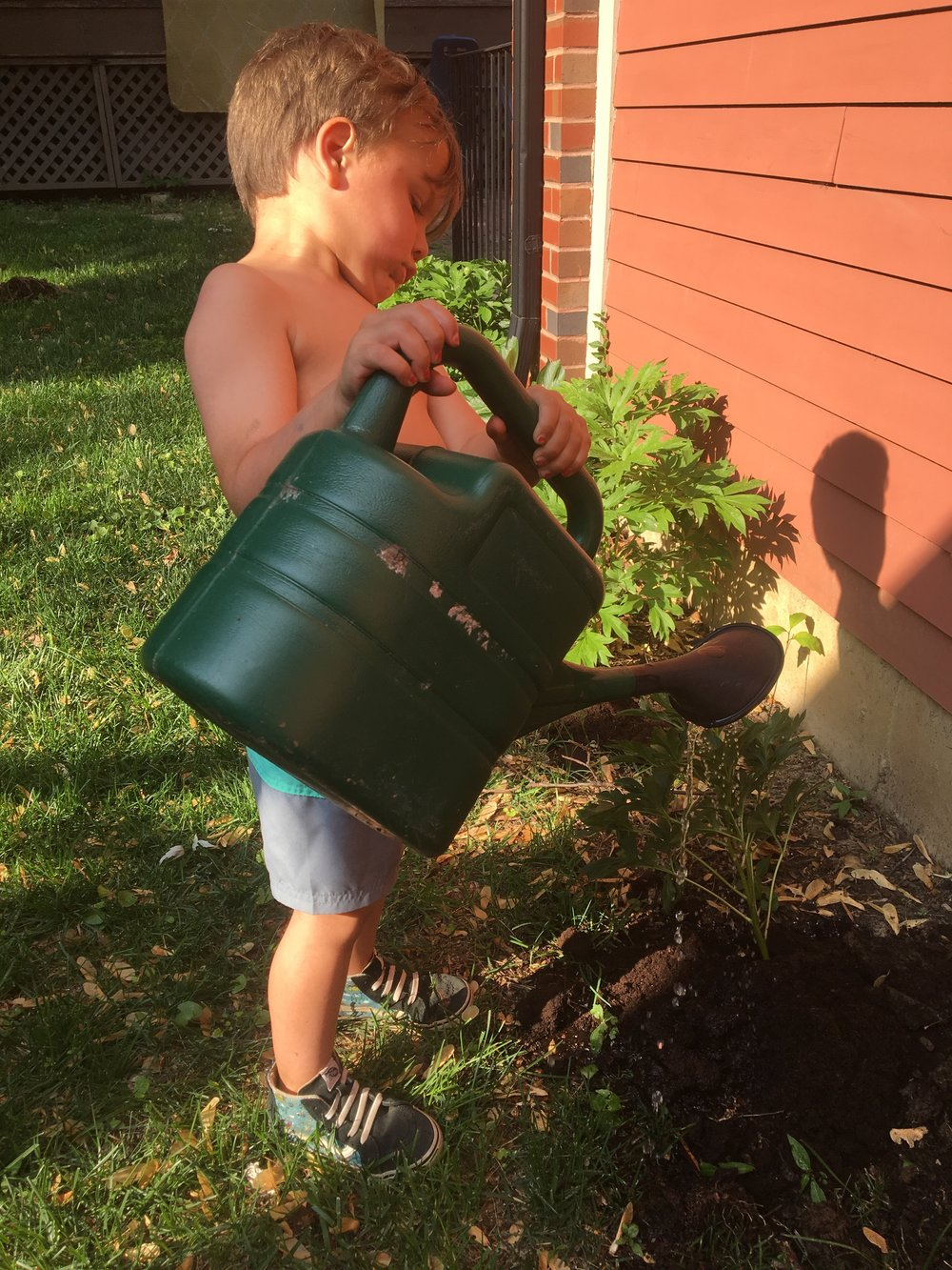 Look at my handsome little garden helper!