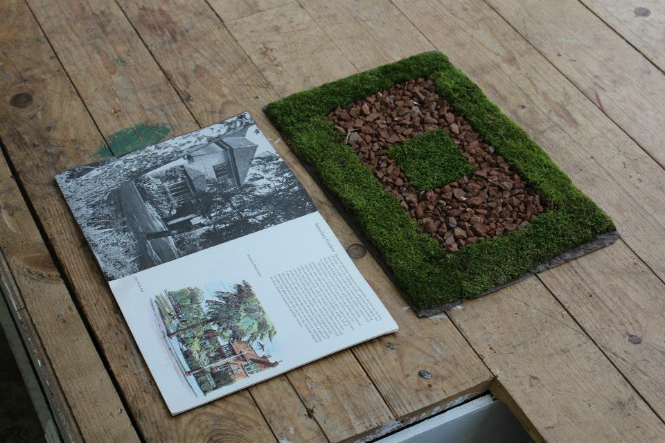 Suburban gardens, fresh invasive neophytes, rocks, tile