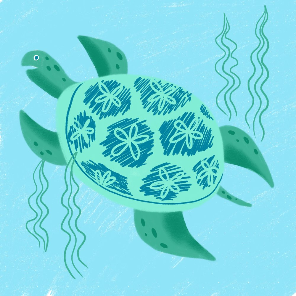 Day_25_Sea_Turtle.jpg