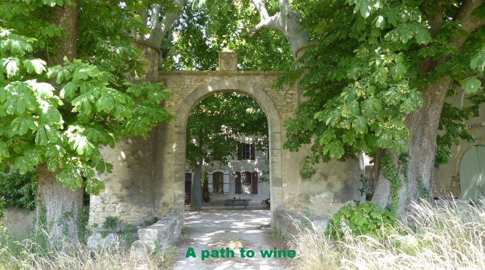 provence-france-winery.jpg