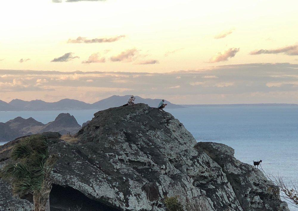 goat-sunset-st-barth.jpg