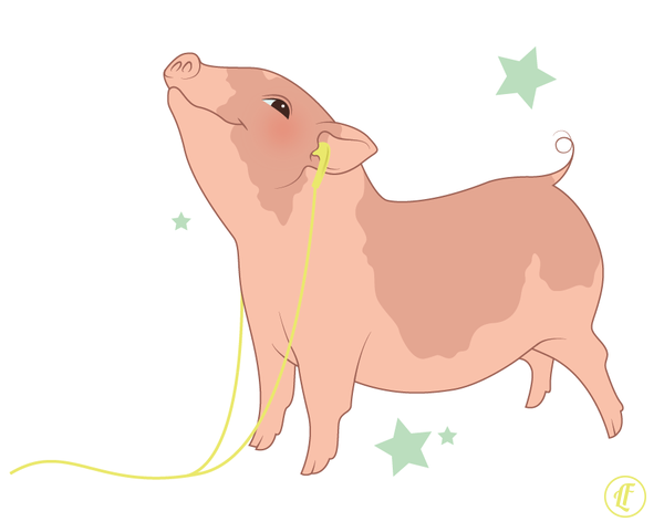 piggy copy.png