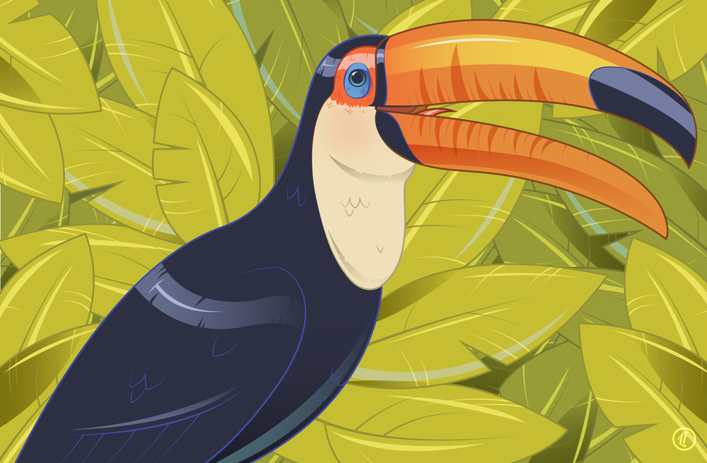 No Toucan-Not