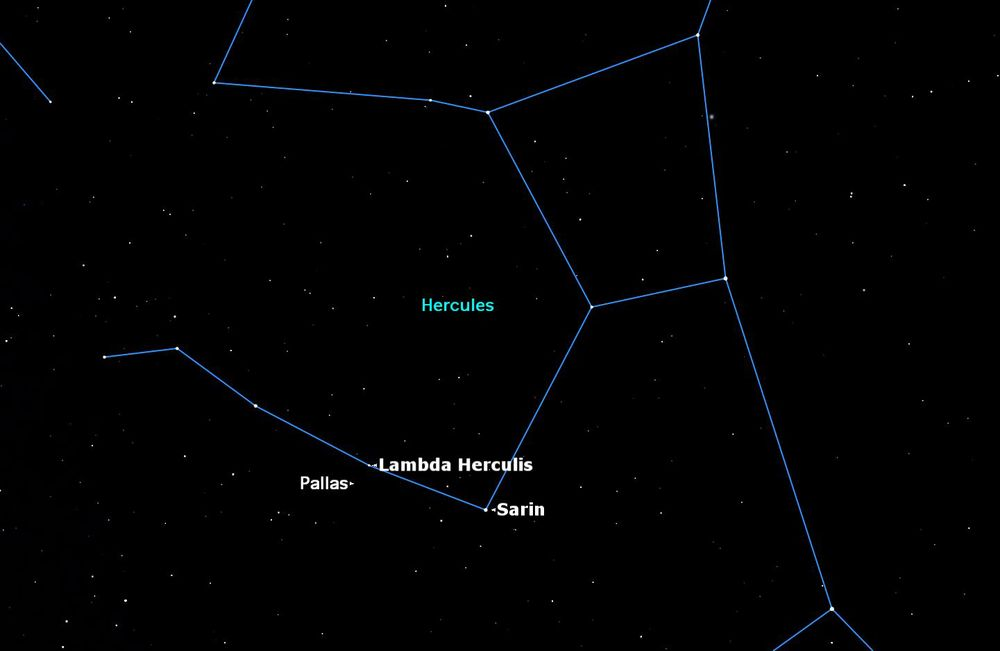 The large asteroid Pallas will be in opposition to the Sun in Hercules on Thursday, June 11.  Credit: Starry Night software.