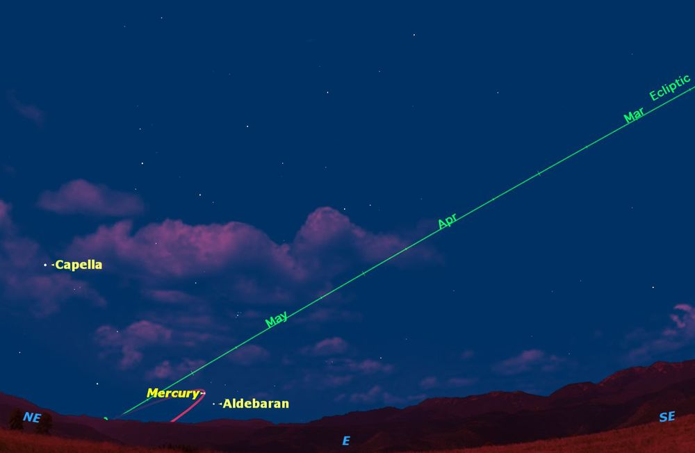 Unless you're paying close attention to the sky, you're likely to miss the current apparition of Mercury. In the northern hemisphere, Mercury can be seen half an hour before sunrise. Credit: Starry Night Software.