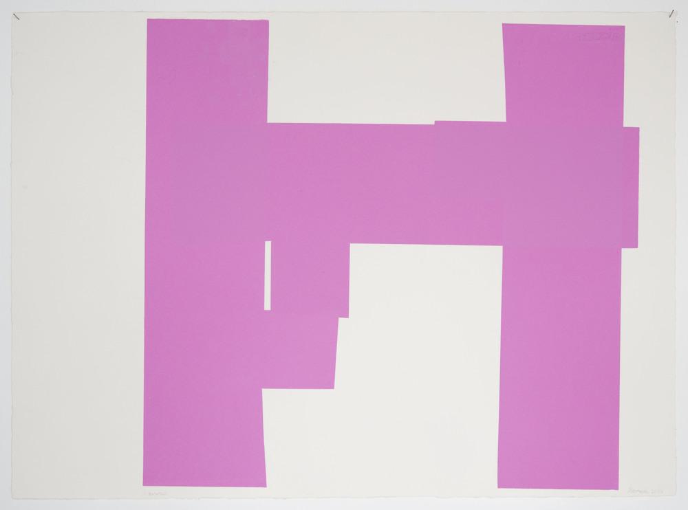 Pink animation8 56x77cm-14 2.jpg